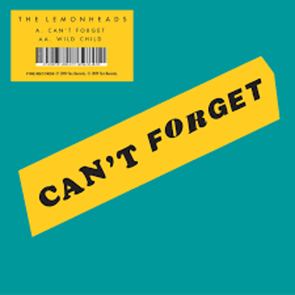 The Lemonheads – Can't Forget / Wild Child Vinyl
