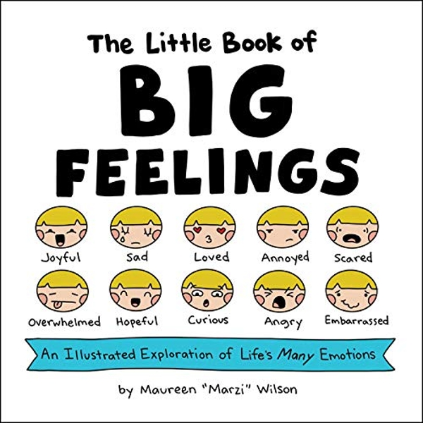 The Little Book of Big Feelings An Illustrated Exploration of Life's Many Emotions  Hardback 2019