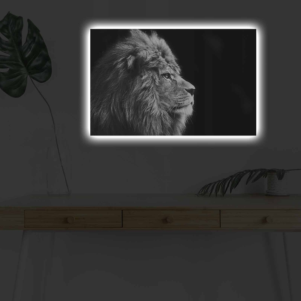 4570DHDACT-058 Multicolor Decorative Led Lighted Canvas Painting