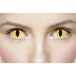 Wild Yellow Cat 1 Day Halloween Coloured Contact Lenses (MesmerEyez XtremeEyez) - Image 4