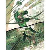 Green Arrow Black Canary Big Game TP