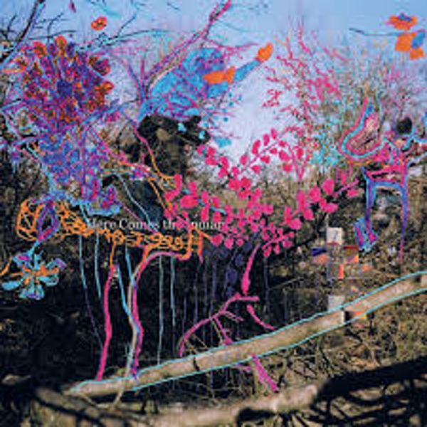 Animal Collective – Here Comes The Indian Vinyl