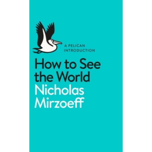 How to See the World