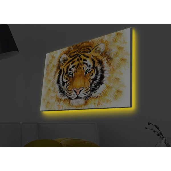 4570MDACT-022 Multicolor Decorative Led Lighted Canvas Painting