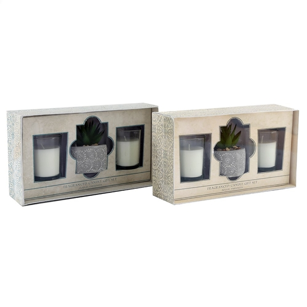 Mediterranean Scented Candle and Succulent Set