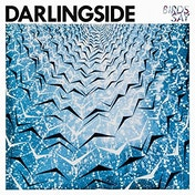 Darlingside - Birds Say Vinyl
