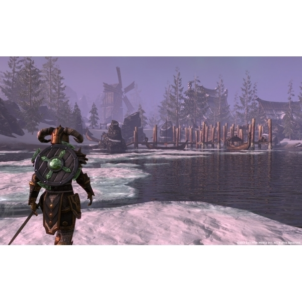 The Elder Scrolls Online Game PC CD Key Download - Image 6