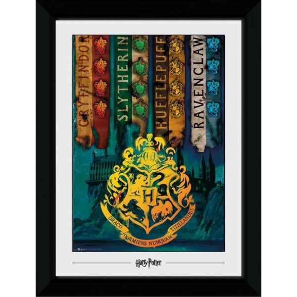 Harry Potter House Flags Collector Print