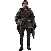 Jyn Erso Deluxe Version (Rogue One A Star Wars Story) Hot Toys 1:6 Scale Figure