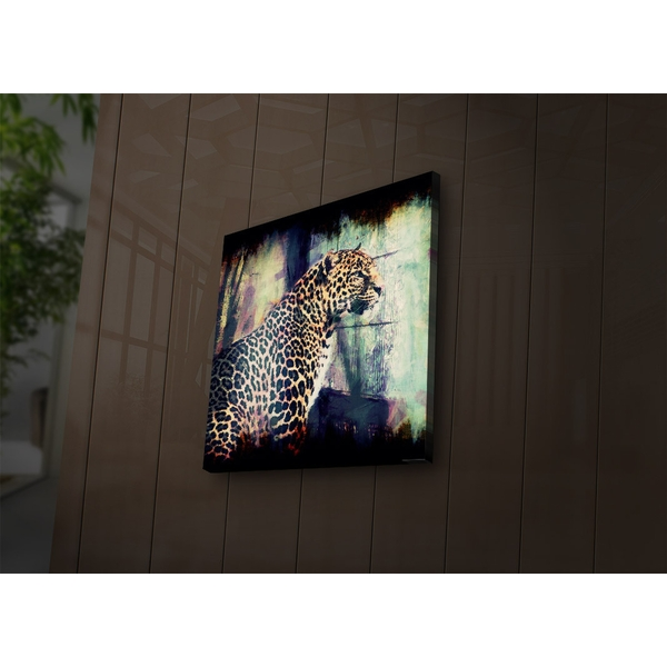 2828?ACT-50 Multicolor Decorative Led Lighted Canvas Painting