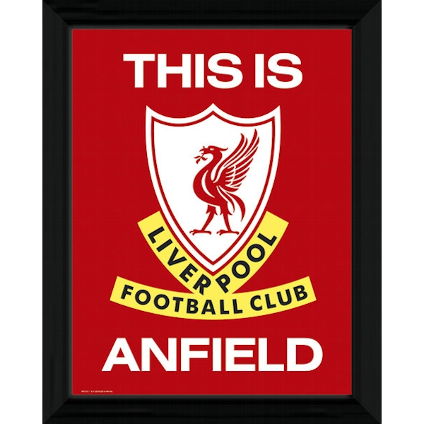 Liverpool This Is Anfield Framed 16x12 Photographic Print