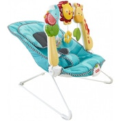 Fisher-Price 2-in-1 Sensory Stages Bouncer