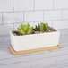 Bamboo Base for Ceramic Planters - Set of 6 | M&W - Image 2