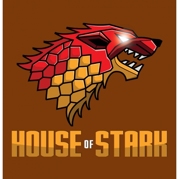 Game of Thrones House of Stark Chocolate Brown T-Shirt Small ZT - Image 2
