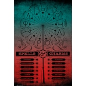 Harry Potter Spells and Charms Maxi Poster