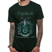 Harry Potter - Slytherin Quidditch Men's Small T-Shirt - Green