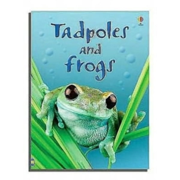 Tadpoles and Frogs by Anna Milbourne (Hardback, 2006)