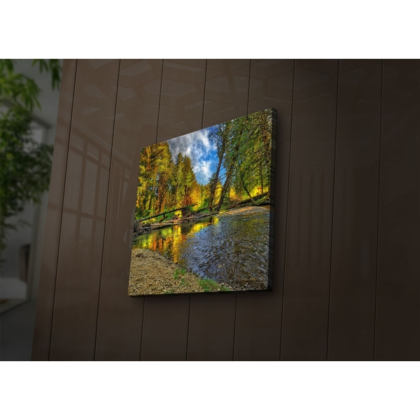2828?ACT-52 Multicolor Decorative Led Lighted Canvas Painting