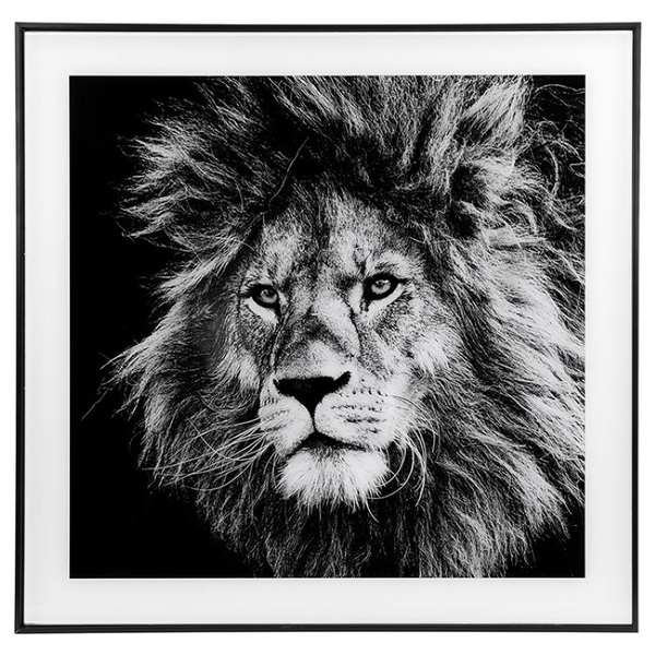 Decor Picture Square Large Lion