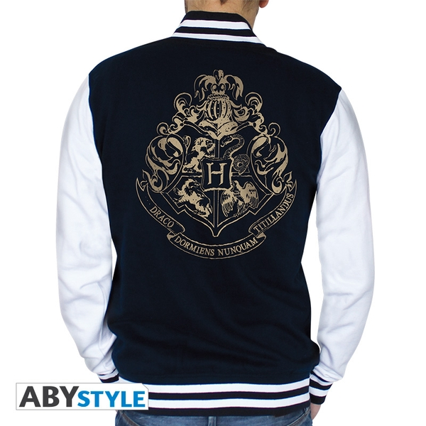 Harry Potter - Hogwarts Men's X-Large Hoodie - Navy/White
