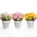 Artificial Daisy Plants - Set of 3 | M&W IHB Australia (NEW) - Image 3