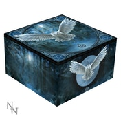 Awaken Your Magic Mirror Box