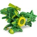 Bakugan Armored Alliance 3-inch Tall Collectible Action Figure (1 Random Supplied) - Image 4