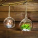 Hanging Tealight Candle Holders | M&W - Image 4