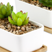 Ceramic Planter & Bamboo Base | M&W x2 Rectangular - Image 6