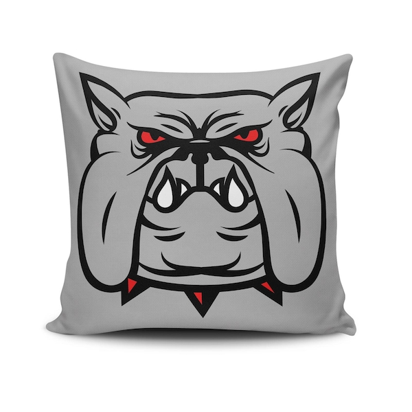 NKLF-393 Multicolor Cushion Cover