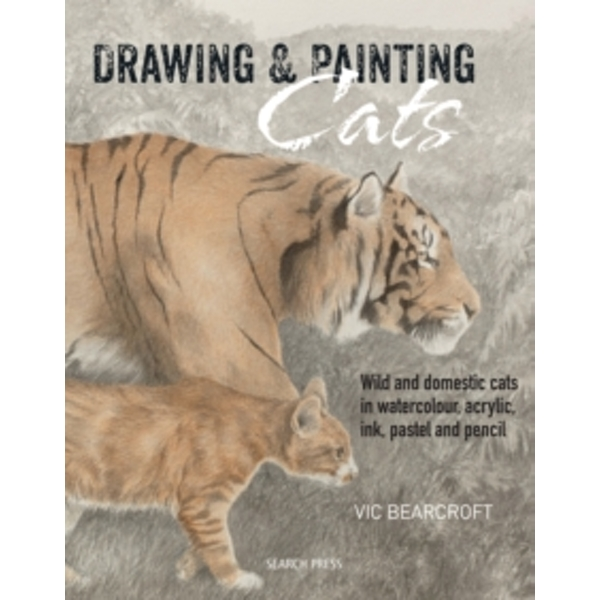 Drawing & Painting Cats : Wild and Domestic Cats in Watercolour, Acrylic, Ink, Pastel and Pencil