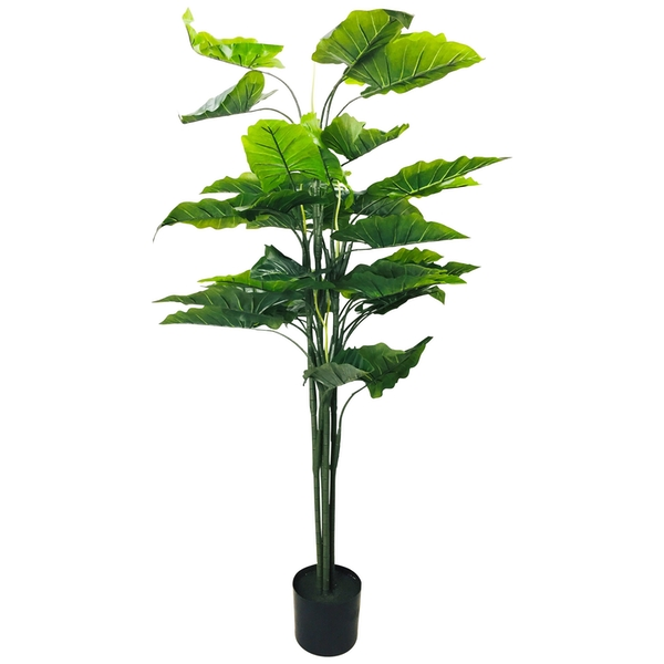 Artificial Taro Tree 145cm