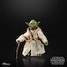 Yoda (Star Wars) Black Series 40th Anniversary Retro Action Figure - Image 4
