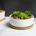 Ceramic Planter & Bamboo Base | M&W Round - Image 2