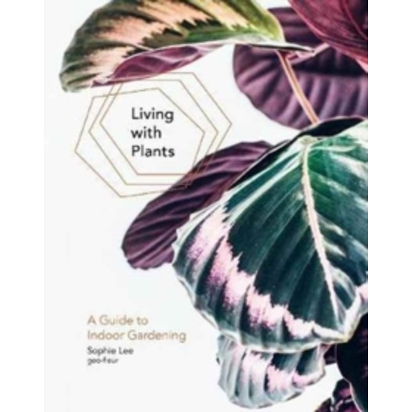 Living With Plants : A Guide To Indoor Gardening