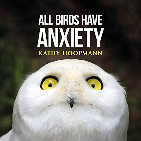 All Birds Have Anxiety by Kathy Hoopmann (Hardback, 2017)