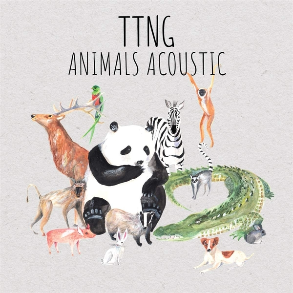 This Town Needs Guns – Animals Acoustic Limited Edition Translucent Green Vinyl