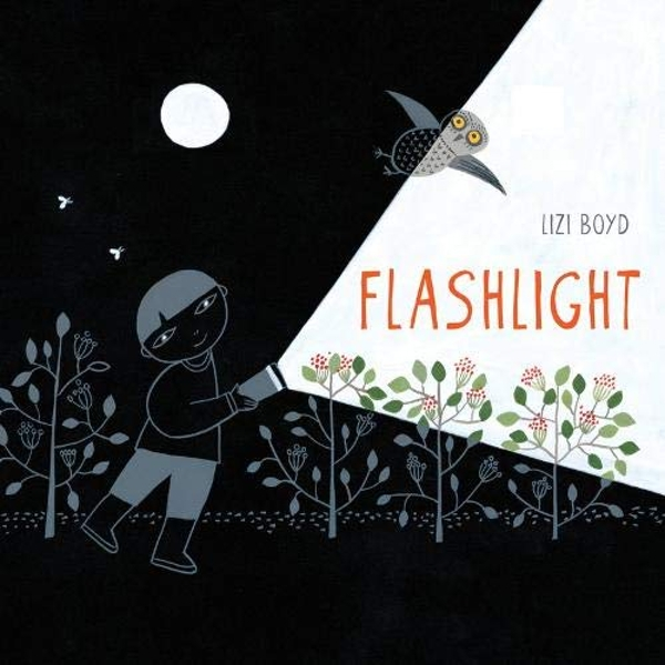 Flashlight by Lizi Boyd (Hardback, 2014)