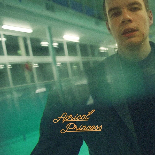 Rex Orange County - Apricot Princess Vinyl