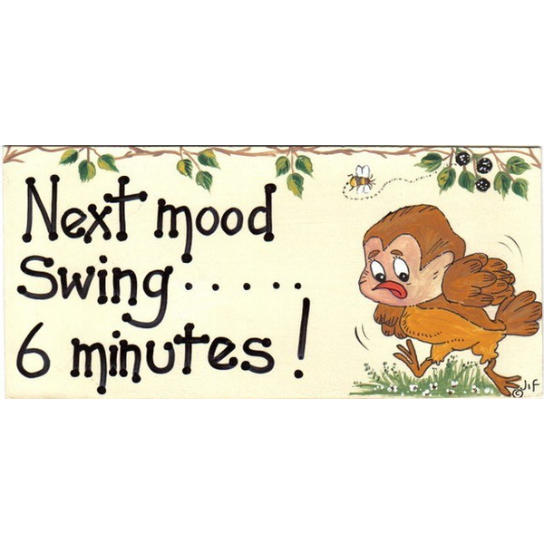 Next Mood Swing.....6 Minutes Smiley Sign Pack Of 6