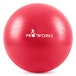 Proworks Gym Fitness Ball (55cm) - Red - Image 2
