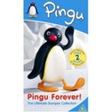 Pingu: Forever - Bumper collection DVD