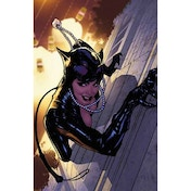 Catwoman The Long Road Home TP