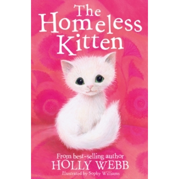The Homeless Kitten by Holly Webb (Paperback, 2017)