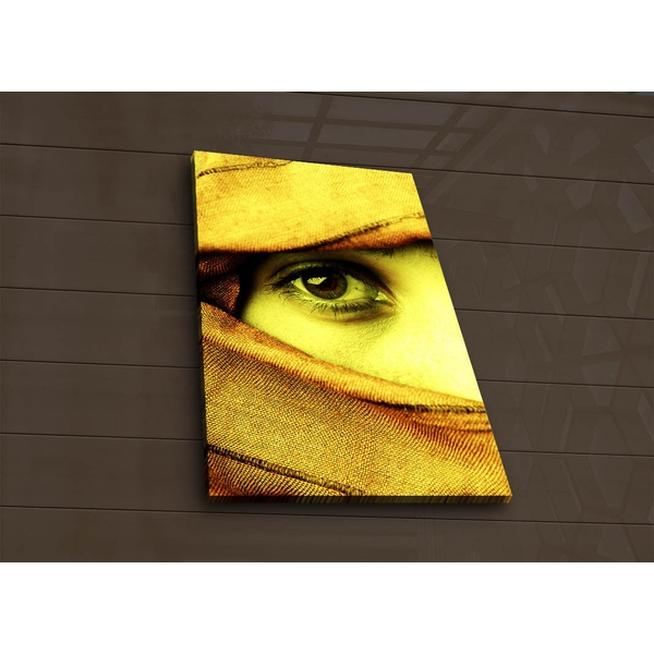 4570?ACT-56 Multicolor Decorative Led Lighted Canvas Painting