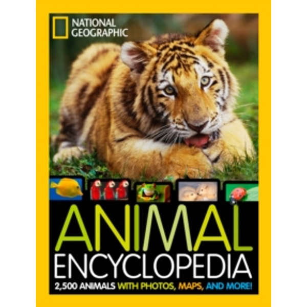 National Geographic Animal Encyclopedia: 2,500 Animals with Photos, Maps, and More! (Encyclopaedia ) by Lucy H. Spelman (Hardback, 2012)