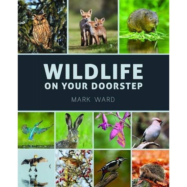 Wildlife on Your Doorstep by Mark Ward (Paperback, 2017)