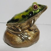 Secrets from Hidden Treasures Frog