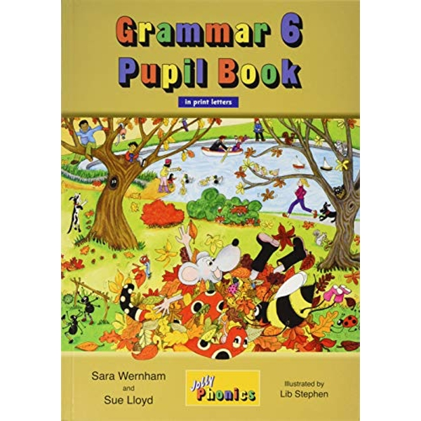 Grammar 6 Pupil Book (in print letters): in Print Letters (BE) by Sara Wernham, Sue Lloyd (Paperback, 2017)