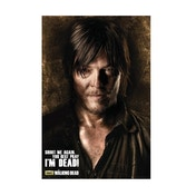 The Walking Dead Daryl Shadows Maxi Poster